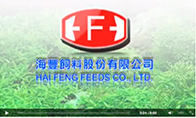 HAIFENG FEEDS Video